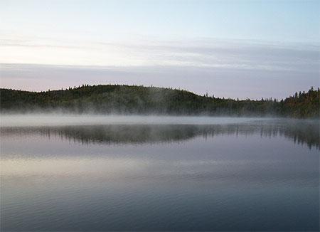 Brume du matin © jennie bérubé ( 46 photos )