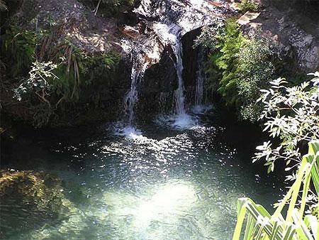 piscine naturelle france