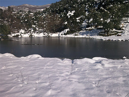 cover photo facebook winter lvql