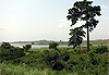 Lac du Buyo - Côte d'Ivoire