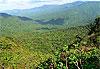 Réserve de Monteverde - Costa Rica