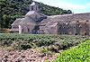 Abbaye de Sénanque - Provence