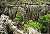 Parc national des Tsingy de Bemaraha - Madagascar