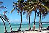 Sainte-Anne - Guadeloupe