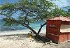 Punta Rucia (Rusia) - République dominicaine