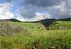 Plateau du Golan - Israël, Palestine