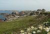 Île d'Ouessant (Eusa) - Bretagne