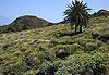 La Gomera - Canaries