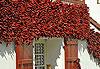Espelette - Pays basque et Béarn