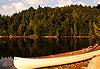 Parc Algonquin - Canada
