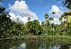 Jardin de Pamplemousses (SSR Botanic Garden) - Île Maurice, Rodrigues