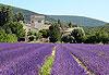 Grignan - Ardèche, Drôme