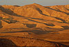 Désert du Néguev - Israël, Palestine