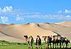Khongoryn Els - Mongolie