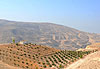 Mont Nébo (Siyagha) - Jordanie