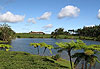Domaine de Bois Chéri - Île Maurice, Rodrigues