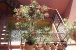 Photo hotel Riad Souad