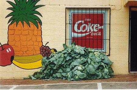Coca Cola en Afrique du Sud