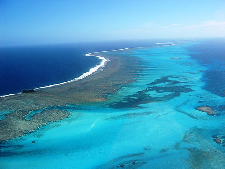 Australie : nouveaux efforts pour protéger la grande barrière de corail