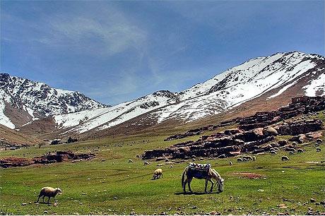 بجولة سياحية المغرب مستعد pt22264.jpg