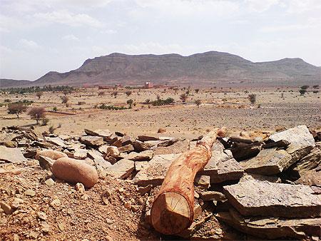 بجولة سياحية المغرب مستعد pt78713.jpg