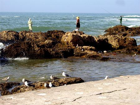 بجولة سياحية المغرب مستعد pt79159.jpg