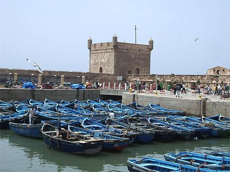 بجولة سياحية المغرب مستعد pt79803.jpg