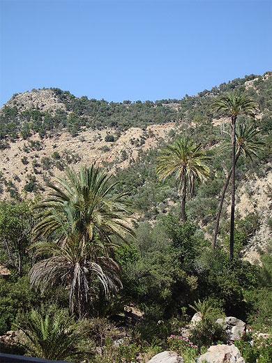 بجولة سياحية المغرب مستعد pt79827.jpg