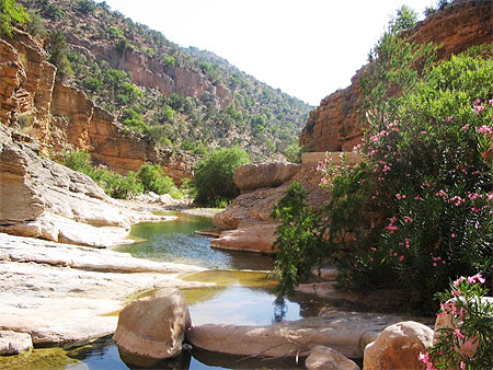 بجولة سياحية المغرب مستعد pt79828.jpg