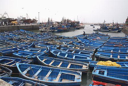 بجولة سياحية المغرب مستعد pt80147.jpg
