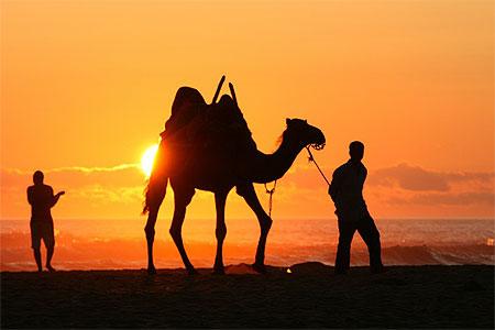 بجولة سياحية المغرب مستعد pt81376.jpg
