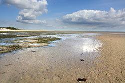 Mer de Wadden © Office National Allemand du Tourisme / Olaf Vernunft