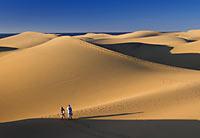 Dunes de Maspalomas © Alex Bramwell - Lex Thoonen / Turismo de Canarias