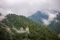 Parque nacional Braulio Carrillo. Sergio Quesada - Flickr - CC BY-NC-SA 2.0