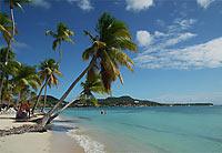 Martinique © jyvais1542