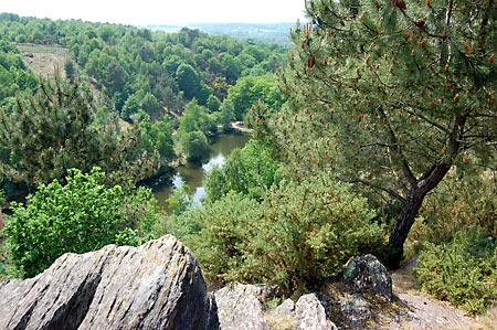 Forêt de Brocéliande © Pays Touristique de Brocéliande