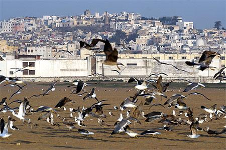 Tanger © photophil