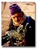 Dans le désert libyque© Edmond Diemer