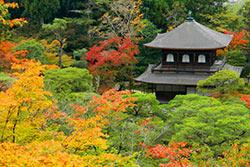Le Pavillon d'Argent à Kyoto © dumultien