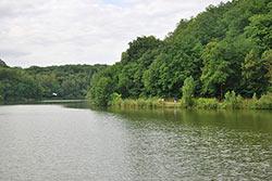 Etang du Moulin à Renard. Gilles Raimbault - Flickr - CC BY NC-SA 2.0